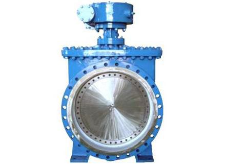 top entry butterfly valves