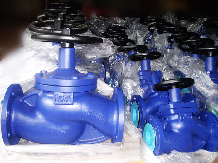 Non rising stem bellows seal globe valves