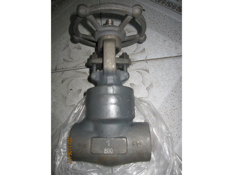 API 602 welded bonnet 800lbs 1'' F91 forged gate valves