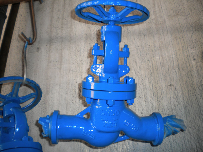 DIN PN 63 DN50 GS-C25 Straight Flow Globe valves
