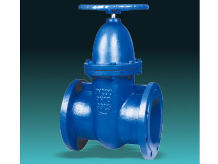 DIN 3352 F4 F5 cast iron metal seated gate valves