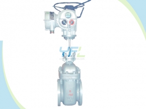 Parallel Double Disc Slab Gate Valve