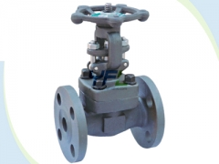 API 602 forging steel gate valves