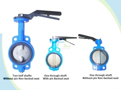Lugged Center Line Double Shaft Butterfly Valve Without Pin