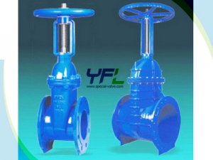 BS 5163 Resilient Seated Gate Valve
