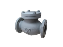 Effective IS F 7358 Cast rion 5K lift type check valve