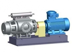 Double screw pump by YFL