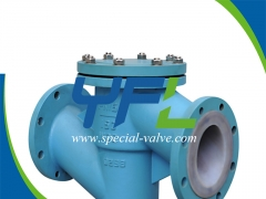 PFA Lined Lift Type Check Valve by YFL