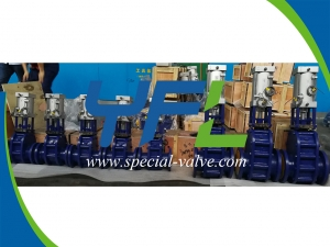 Ceramic double wedge gate valves